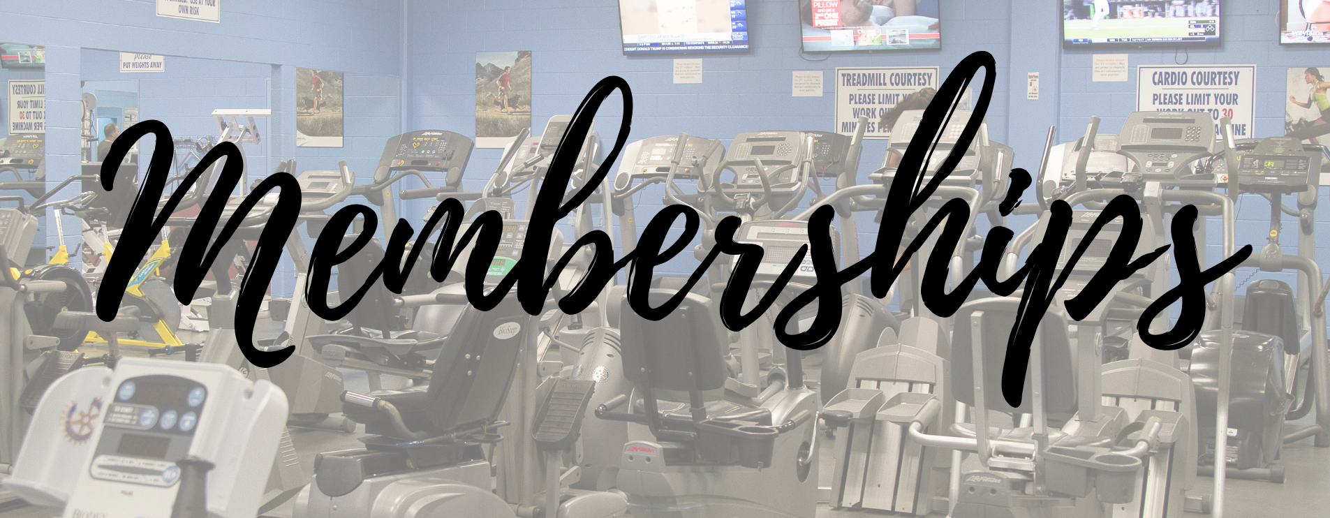 Memberships - Picture of weight room